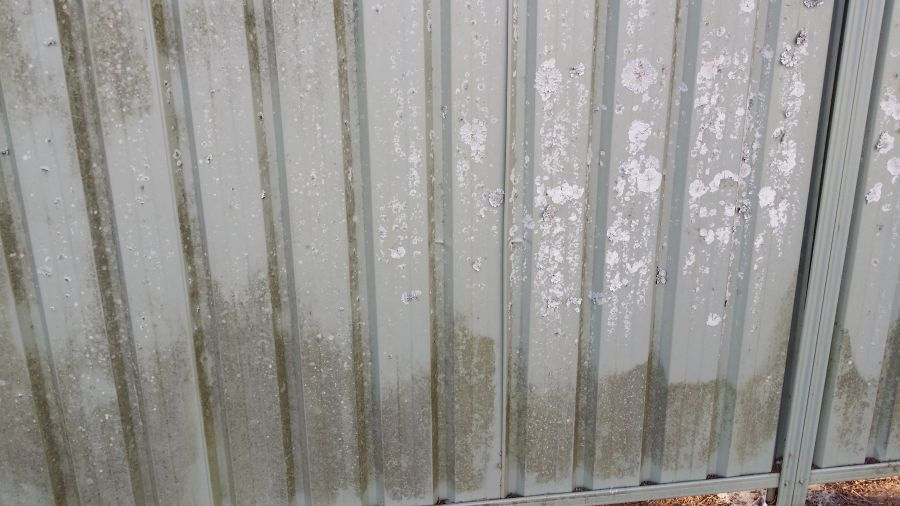 Water Pressure Washing A Colourbond Fence In North